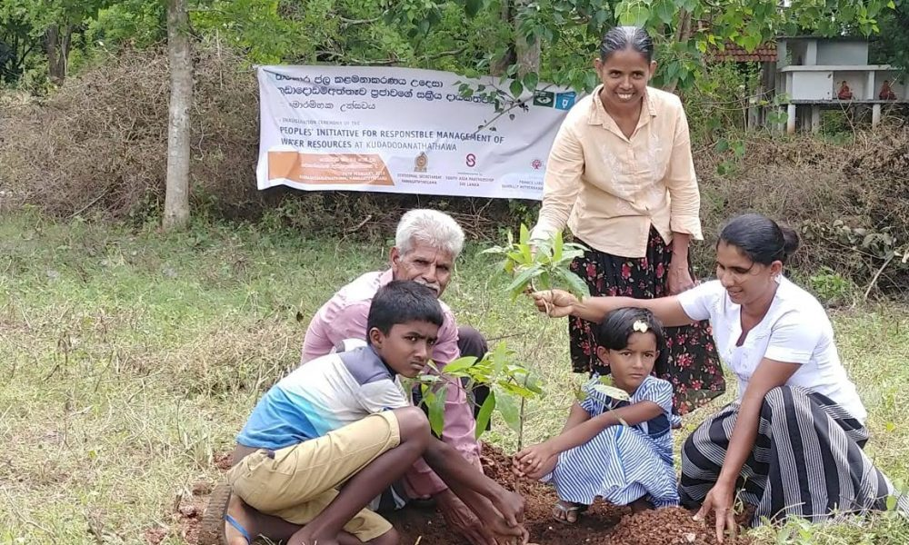 Improving the tree cover of the Kuddodanaththawa Village